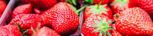 how to extend shelf life of food